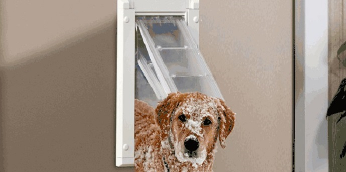 insulated dog door flap